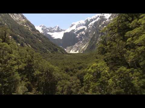 Fiordland National Park Hallelujah