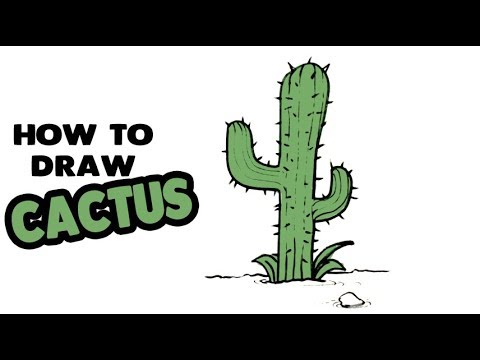 Cactus Drawing Step by Step #Cactus #Drawing - 3dVkArts