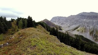 4 year old hiking Pocaterra Ridge Kananaskis Alberta
