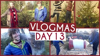 Our First Christmas Tree & Decorating! • VLOGMAS {DAY 13} Thumbnail