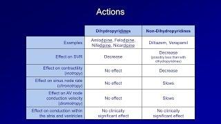 Antiarrhythmics (Lesson 5 - Calcium Channel Blockers)