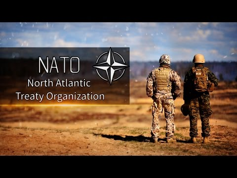 North Atlantic Treaty Organization 2015 | NATO 2015