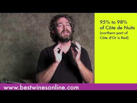 Wine-O-Pedia: Burgundy Part 1
