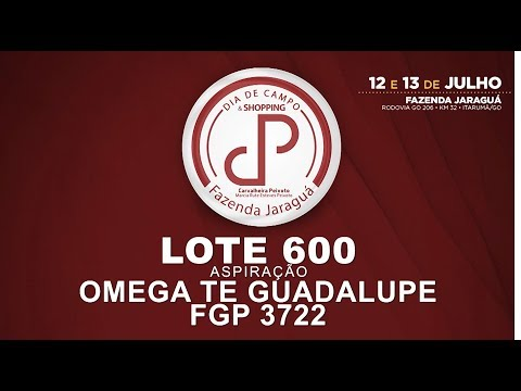 LOTE 600