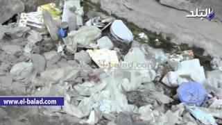 بالفيديو.. الإهمال والقمامة يحاصران 'الظاهر بيبرس' في ذكرى انتصاره على الفرنجة