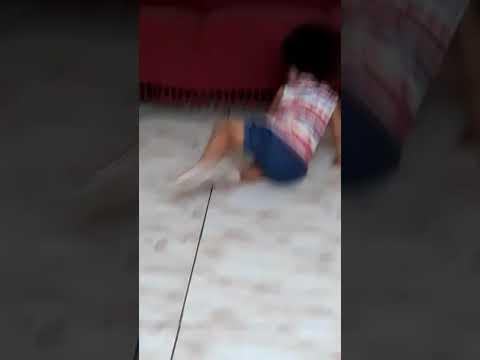 Pequena Sofia dançando *