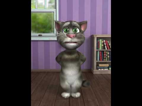 Funny Cartoon Cat In Hindi Youtube