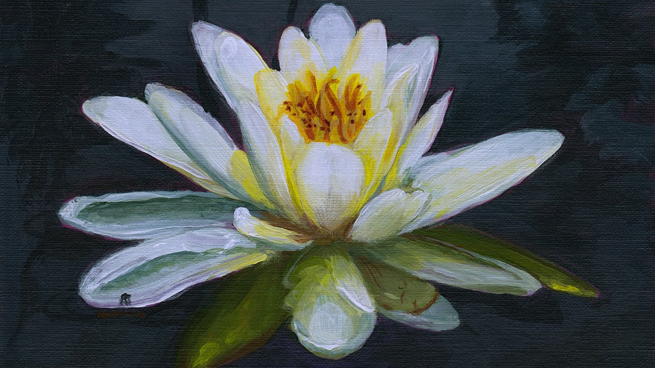 Painting A Water Lily In Acrylics Narrated