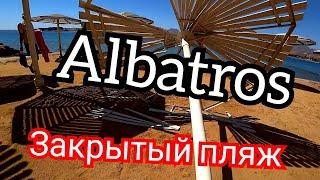 Египет 2020 Закрытый пляж в Albatros Aqua Blu Resort 4