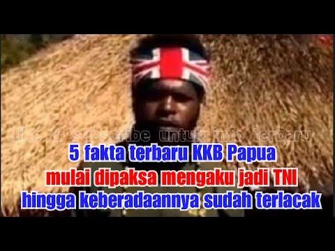 Inilah 5 Fakta Terbaru Terkait KKB Papua
