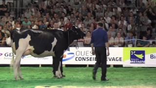 Concours Holstein Space 2014 : Carmen-OTS, grande championne