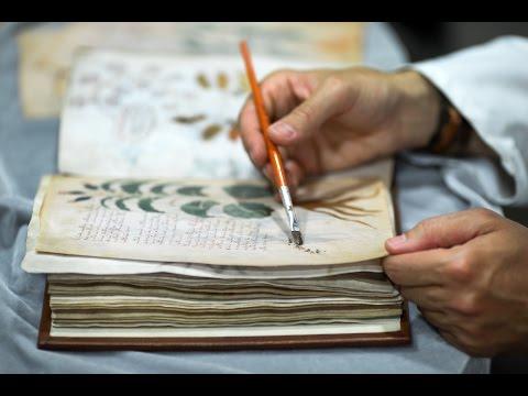 Самая загадочная рукопись в мире. Скачать Манускрипт