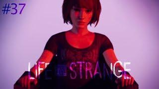 ДНЕВНИК ПАМЯТИ 📕 Life is Strange |Эпизод 5| #37