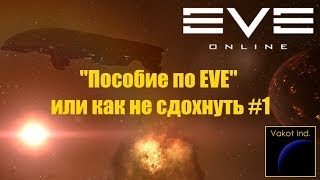 'Пособие по EVE', или как не сдохнуть #1 (Выбор фракции)