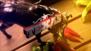 "Destination America: ""BBQ PITMASTERS"" (special-edition director's cut promo)"
