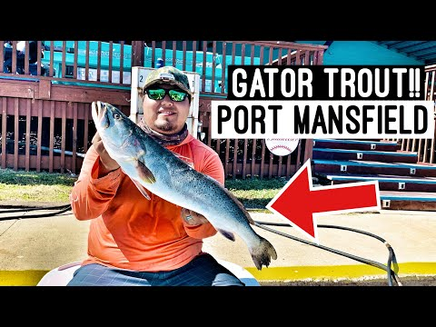 Trophy Speckled Trout Fishing In Port Mansfield, Tx