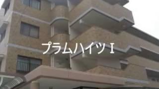 プラムハイツ1/福岡市西区下山門/トーマスリビング西新店