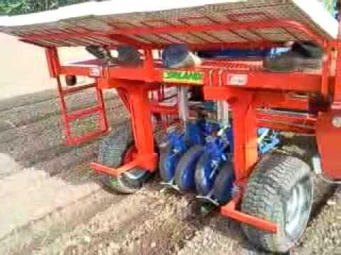 Macchina per piantare pomodori mulino elettrico per for Piantare pomodori