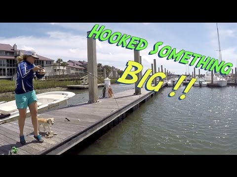 BIG Fish On Cutbait Fishing Docks In Charleston South Carolina - KastKing