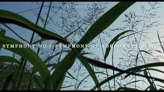 """The Tree of Life"" Soundtrack - Symphony No. 3 - Symphony of Sorrowful Songs"