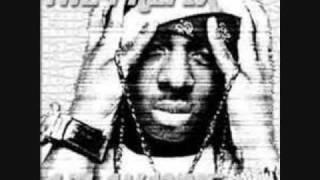 Lil Wayne-Public Service Annoucement (The Prefix)