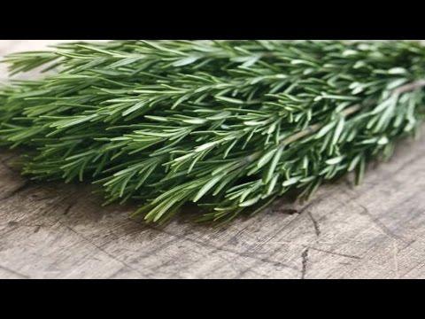 6 Secret Health Benefits of Rosemary
