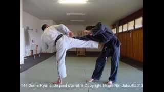Ninpo Nin Jutsu®, Programme Technique 2. 5-1er Kyu