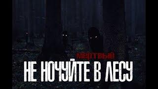 СТРАШНЫЕ ИСТОРИИ - Не ночуйте в лесу(16+)(финал сезона)