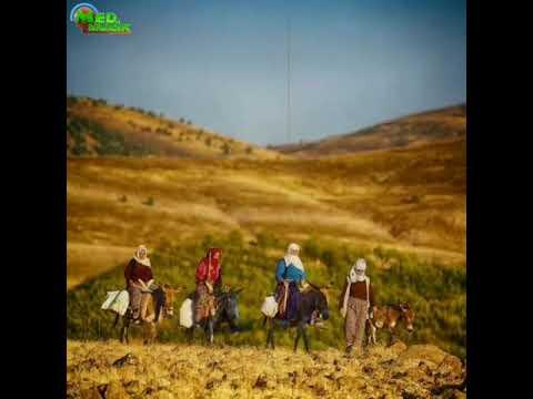 Kürtçe müzik dinle(7)