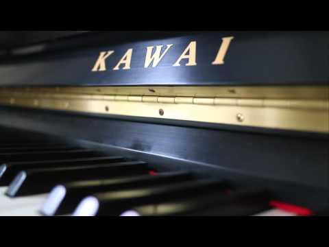 Grieg: Papillon (Piano By Emily Su)