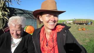 The Best Pumpkin Seasonal Fall Treats