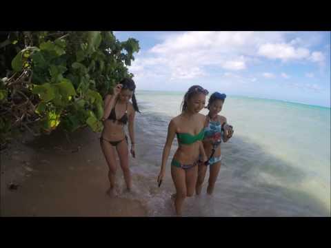 Cocos Island Trip Continues