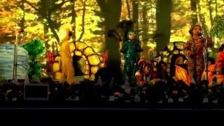 006.Drama -Zelda the Zebra