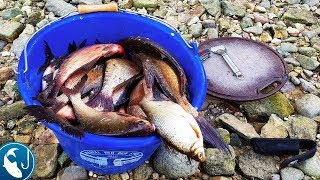 Ловля леща на фидер в августе на реке. Жор леща летом. Готовим на природе.