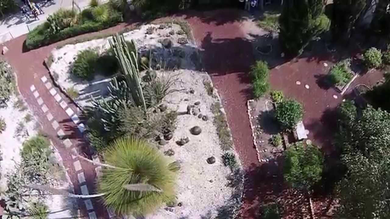 vuelo dron jard n bot nico cactus arboretum fesc unam