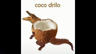 COCO DRILO XD