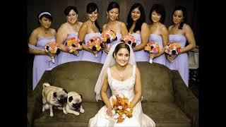 Сельская свадьба(2)