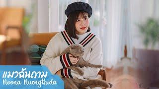 Official MV แมวฉันถาม - NOONA (หนูนา หนึ่งธิดา)