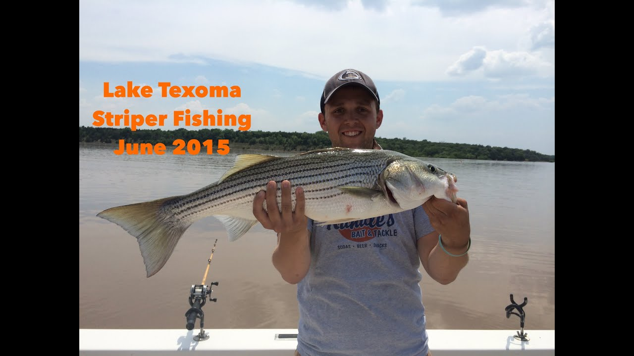 lake texoma striper fishing youtube
