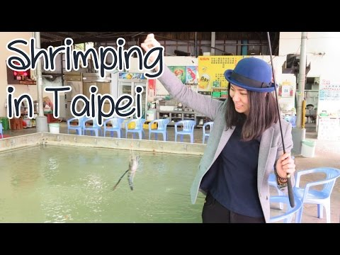 [Sunny Travels] Taipei Vlog Part 3 - Taipei Zoo in the Raining & Shrimping