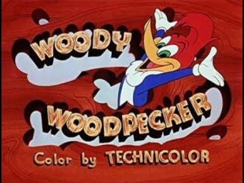 مقدمة الفلم الكرتوني(Woody Woodpecker) نقار الخشب