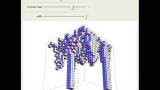 Phase Transitions in a 2D Cellular Automata - A 3D View