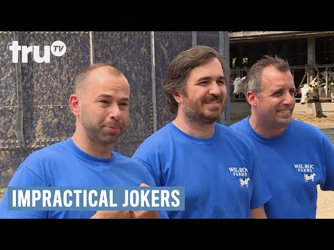 Impractical Jokers  Sal Delivers a Baby Cow Punishment  truTV