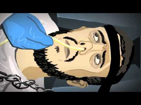 Guantanamo Bay:  Animated Force Feeding