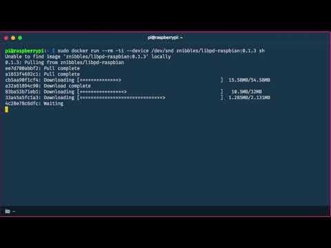 02 LibPD Docker Install