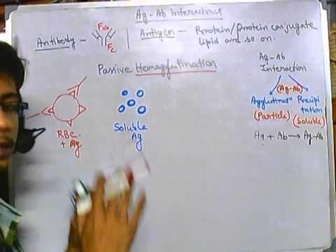 Hemagglutination assay