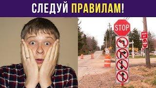 Приколы и мемы. Следуй правилам! | Мемозг #37