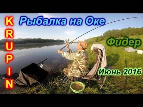 видео рыбалка на оке на фидер видео на ютубе