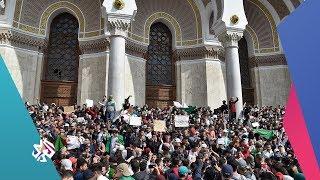 العربي اليوم│الجزائر .. المظاهرات مستمرة