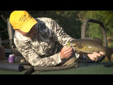 Fly Fishing For Smallmouth Bass On Midwest Waters: Re-Discover Your Region #7